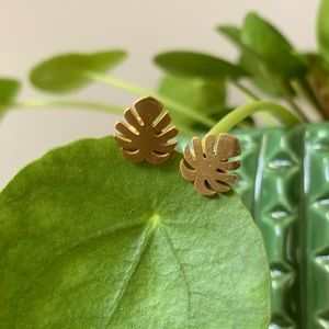 Monstera Deliciosa Leaf stud earrings stainless